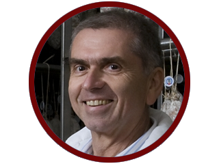 Umberto Boschi
